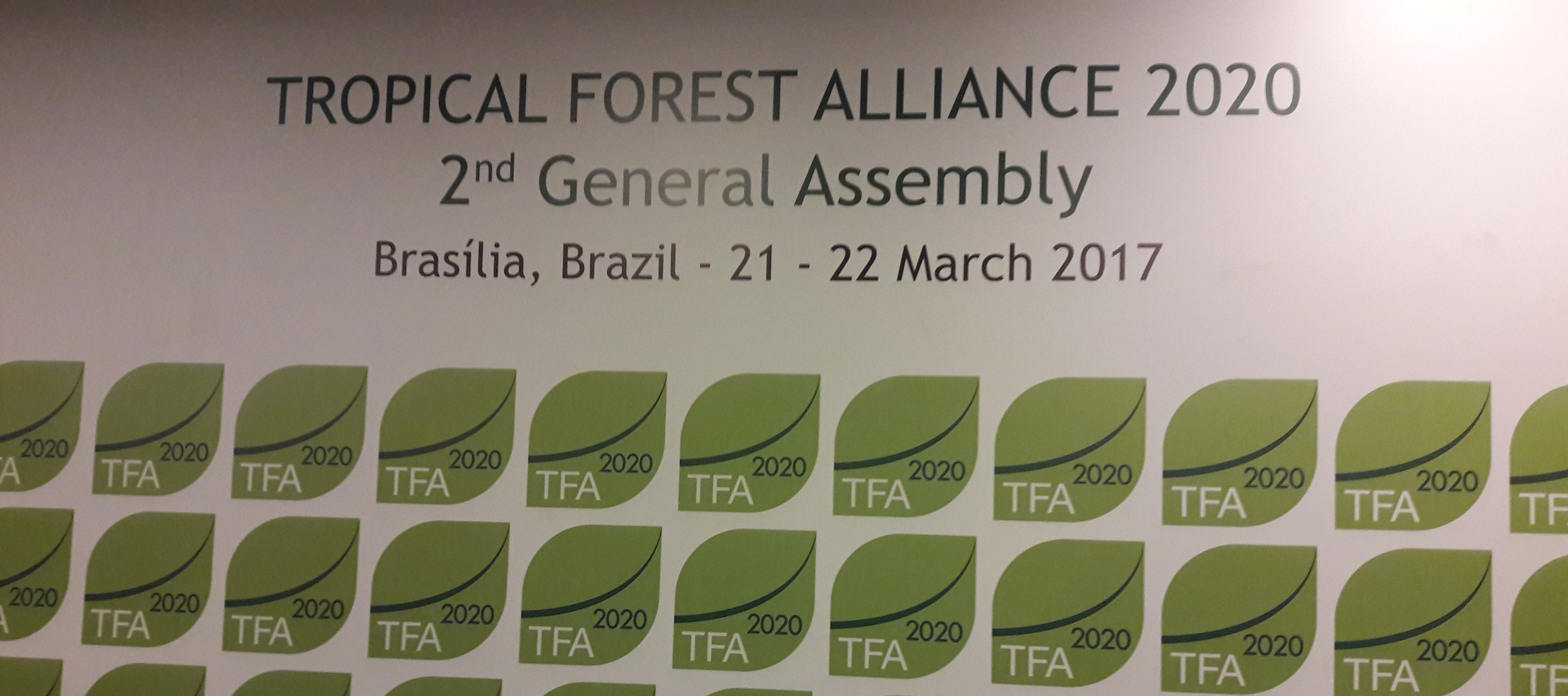 Journée Internationale des forêts/Tropical Forest Alliance 2020