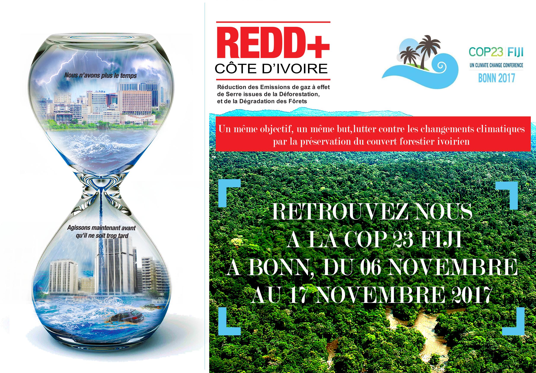 COP 23 de Bonn en Allemagne, la REDD+ Côte d'Ivoire au rendez vous !