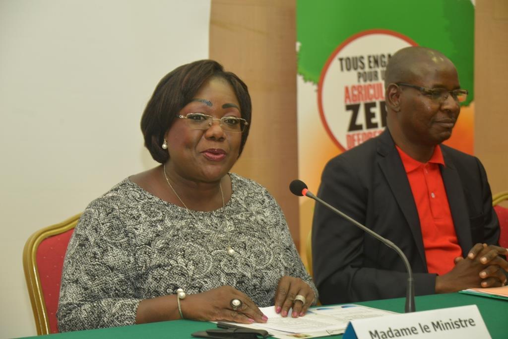 Mise en œuvre de la stratégie nationale REDD+