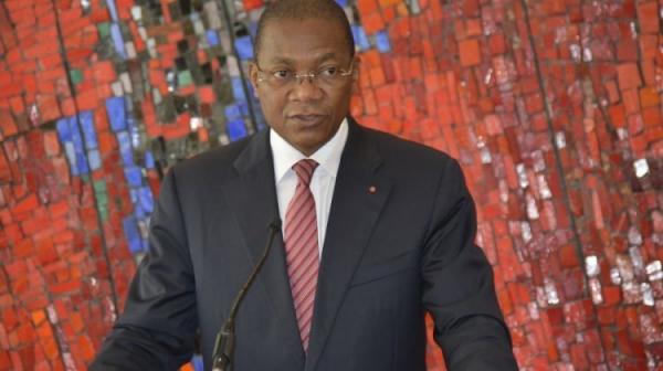 La Stratégie Nationale REDD+ Côte d'Ivoire adoptée par le Gouvernement
