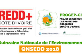 LOGO PARTICIPATION QNSEDD 2018