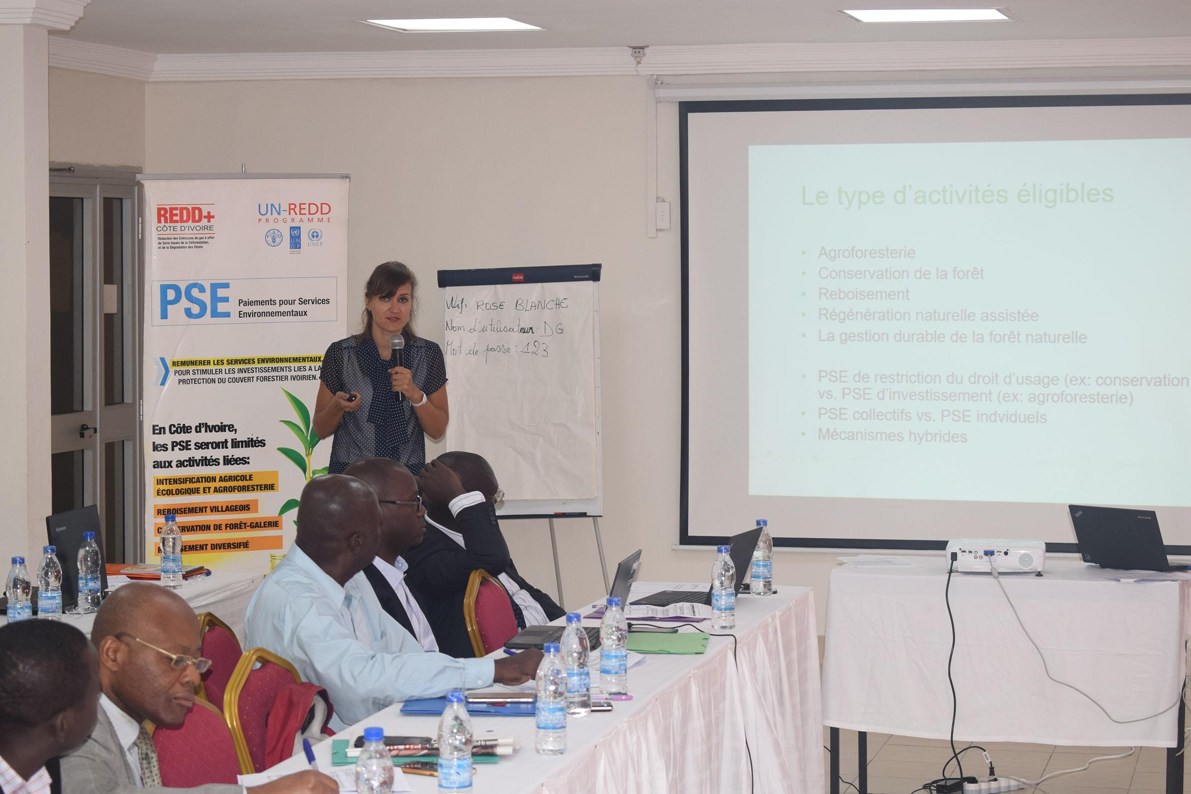 3 milliards de F CFA pour les planteurs ivoiriens qui s'engagent dans le système de paiements pour services environnementaux. (ONG)