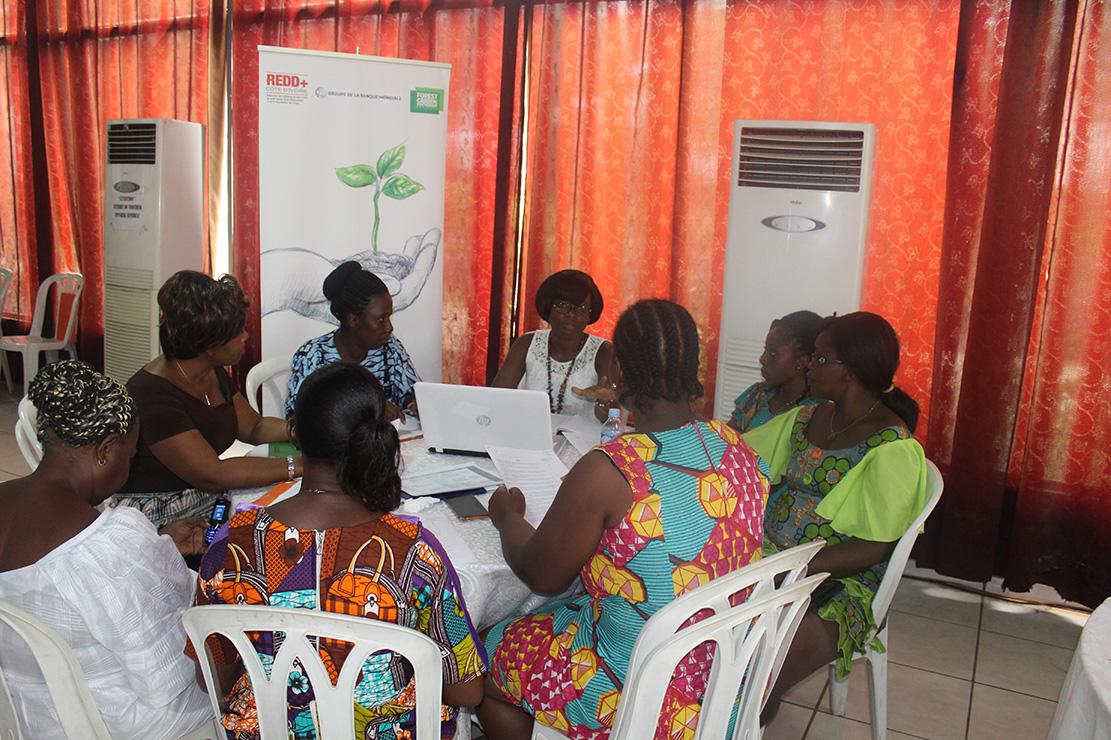 Consultation régionale : La REDD+ sollicite la contribution de la société civile