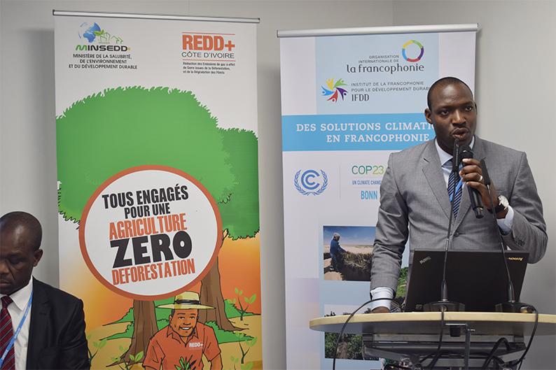 COP 23 — Le Projet REDD+ de la Mé, une combinaison d'actions innovantes pour enrayer la déforestation dans le domaine rural de Côte d'Ivoire
